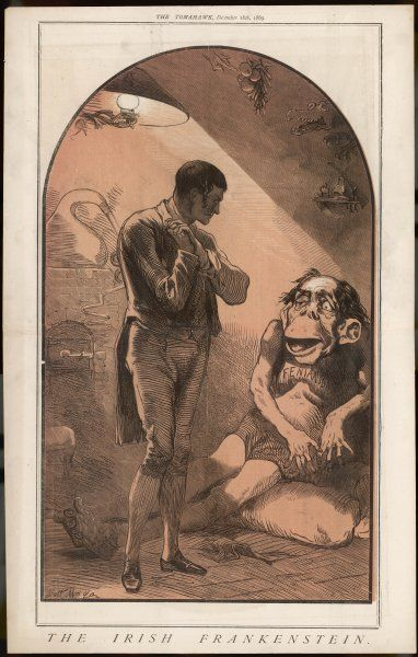 THE IRISH FRANKENSTEIN Anti-Irish cartoon depicting the Irish Fenian as a monster