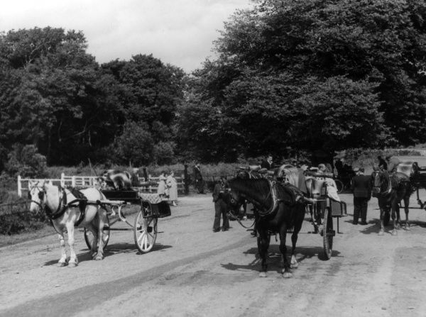 Jaunting Cars, still a favourite method of carrying tourists, at Ross Castle, near Killarney, County Kerry, Ireland. Date: 1950s