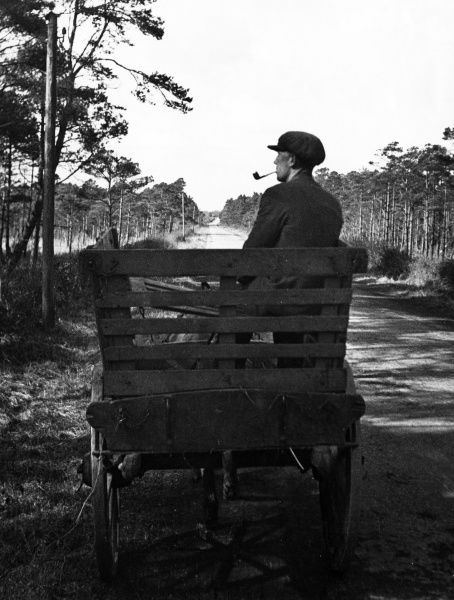 A young Irish man wearing a cloth cap, riding home from work on his horse and cart and admiring the beautiful countryside. Date: 1930s