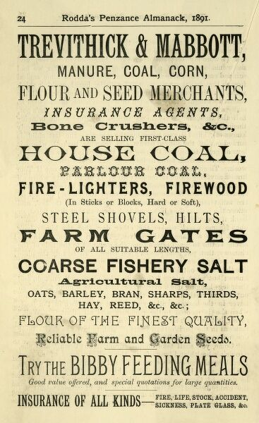 An ironmonger's advert for Trevithick and Mabbot ironmongers, offering delights such as coarse fishery salt and bone crushers