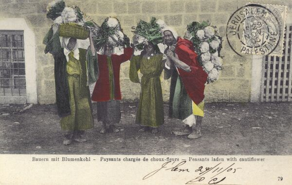 Peasants laden with cauliflowers in Jerusalem - at this stage under Ottoman control. Date: 1905