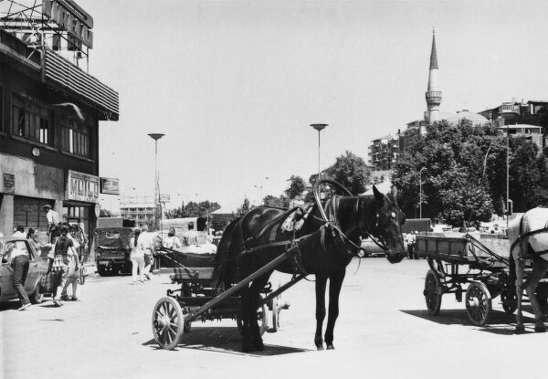 Istanbul, Turkey - Horse-drawn cart