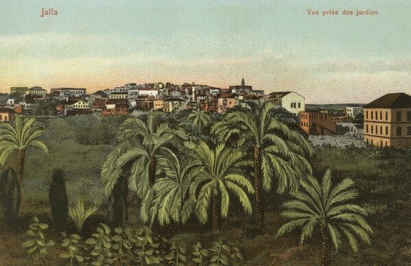 Jaffa - Israel - now incorporated into Tel Aviv, forming Tel Aviv-Yafo. View close to the Gardens. Date: circa 1906