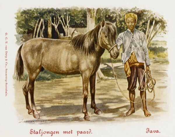 Java - Indonesia - Stableboy with horse