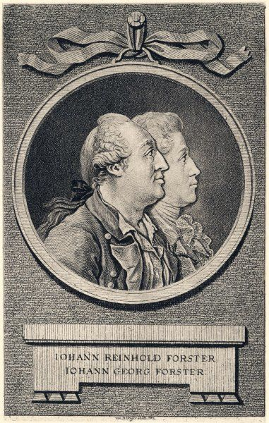 JOHANN REINHOLD FORSTER and GEORG FORSTER (1754 - 1794) Father and son travellers and writers, who accompanied Cook on his second world voyage