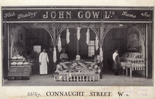 John Gow Ltd - Conaught Street, London. Purveyors of Fish, poultry, game, eggs and ice. There is a whole row of geese for sale at the front of the display. Date: circa 1905