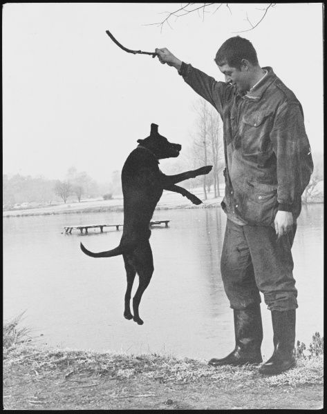 A man standing beside a lake, holding a stick in the air while his jumping dog tries to get it!