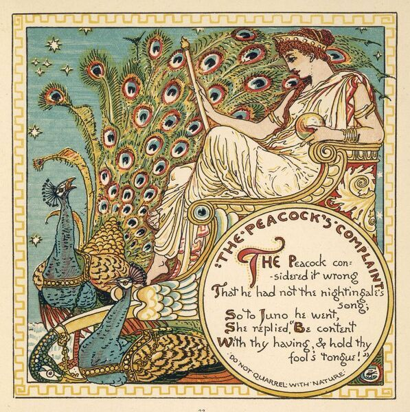 The Peacock (Pavo cristatus) complains to Juno that he can't sing as well as the nightingale ; she tells him to be content with what he's got