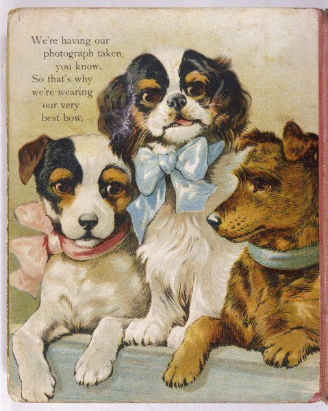 Here we all are, the more, the merrier ! I'm a King Charles, my friends are terriers. Date: circa 1880