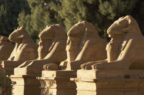 Karnak Temple Avenue Of Sphinxes With Rams Head Symbol Of