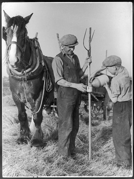 After a hard morning ploughing, two Kentish farm workers take a well earned break and pour themselves a mug of cider from a pottery flask