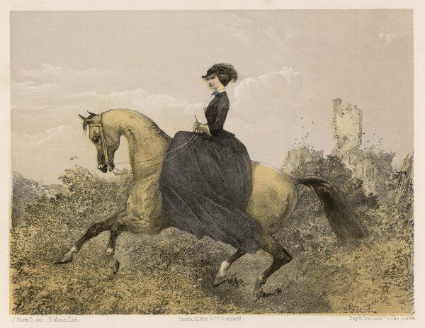 An accomplished equestrienne demonstrates the canter