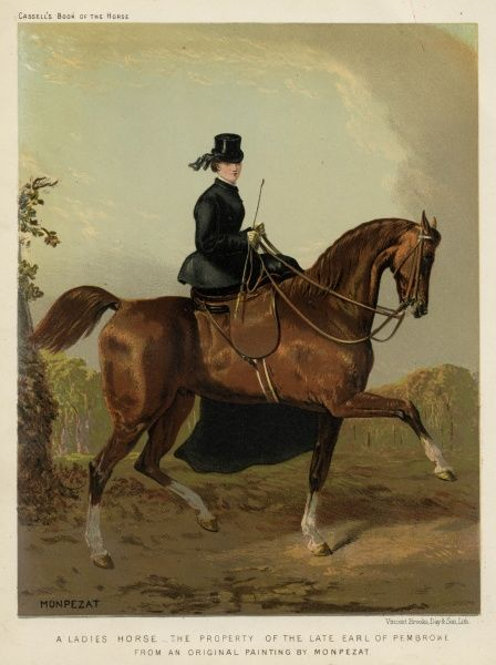 A lady riding sidesaddle: the horse belongs to the late Earl of Pembroke. Date: 1870s