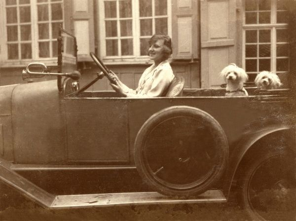 A lady with two litte dogs on the back seat of her tourer