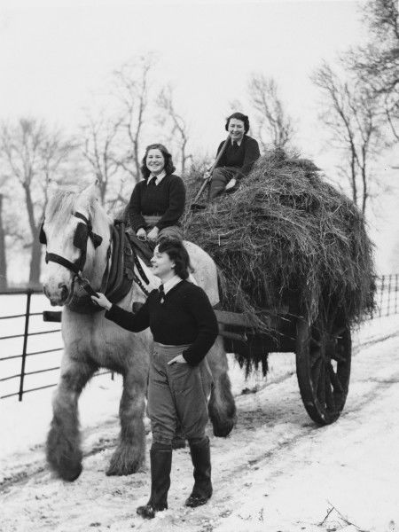 Land Girls, Mrs. Gosden, Miss Peggy Rose and Miss Ivy Baldwin, with a horse and hay cart farming on a farm in Tooting during World War II
