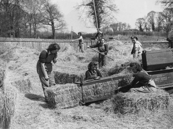 Land girls from a mobile Land Army unit sent out by the Surrey War Agriculture Executive Committee baling hay on a farm near Abinger Hammer, between Dorking and Shere during World War II