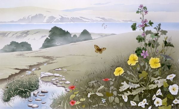 A landscape consisting of wild flowers and Butterflies in the foreground, a meandering stream leading down intoa valley and distant water and mountains. Painting by Malcolm Greensmith