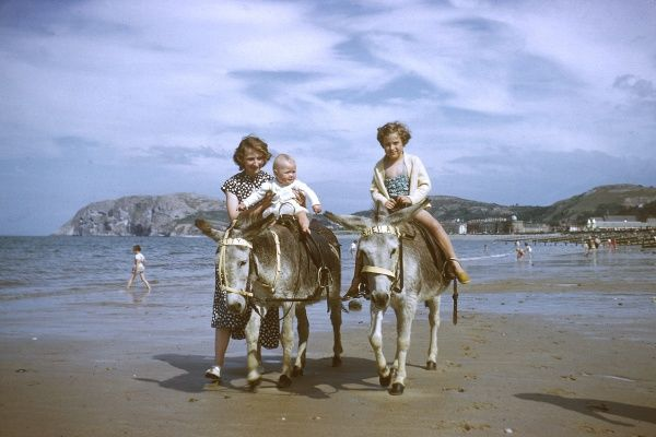A mother and her children enjoy riding on the donkeys at Llandudno beach, Wales. Date: early 1960s