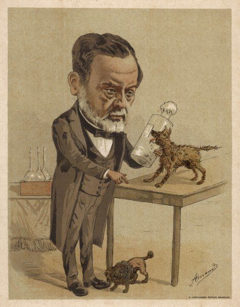 Louis Pasteur, French chemist and microbiologist. Best known for his scientific breakthroughs in the causes and prevention of diseases