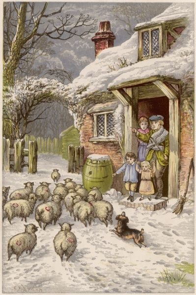 A farm in Winter - the family stand on the doorstep as their sheepdog herds the sheep past