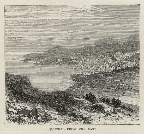 A view of Funchal from the East Date: 1876