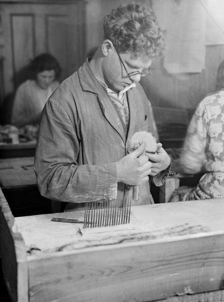 A young man with curly hair and wearing spectacles, combing badger bristles for making into shaving brushes. Date: early 1930s