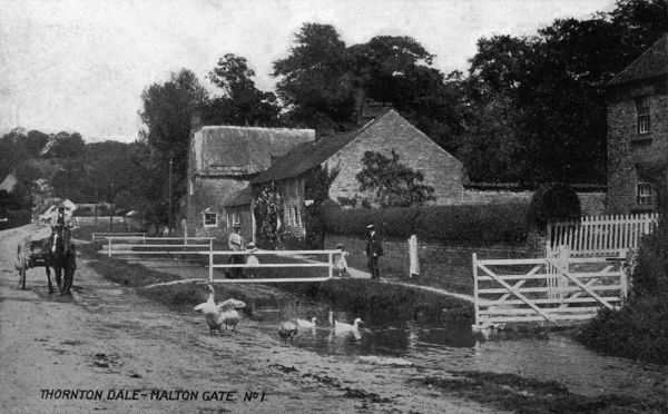 Scene at Malton Gate, Thornton Dale (Thornton-le-Dale), near Pickering, North Yorkshire. Date: circa 1910