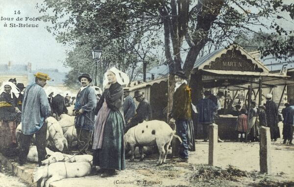 Market day at St Brieuc, France - A lady has brought her pigs to sell. Date: circa 1910s