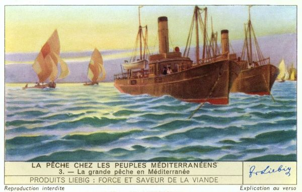 Italian steamers fish the entire extent of the Mediterranean, including the coast of North Africa. Date: 1939