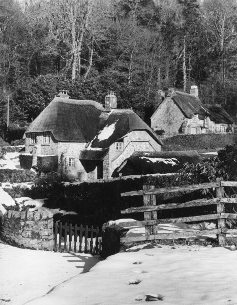 Melting winter snow on the thatched roofs of some of the old cottages at Buckland-in- the-Moor, in the heart of Dartmoor, Devon, England. Date: 1960s