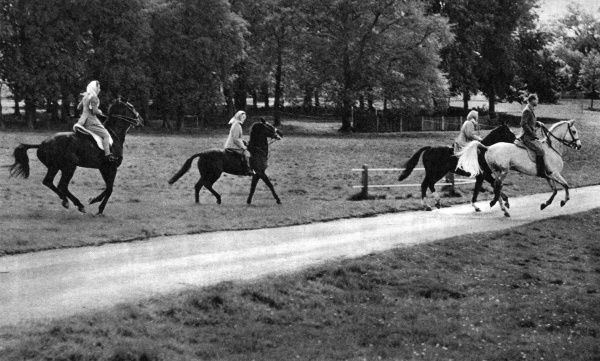 The Queen and Duke of Edinburgh lead a ride through Windsor Great Park. Princess Margaret is galloping up from the left, and Lady Pamela Mountbatten is in the centre. They are inspecting some of the jumps in the European Horse Trials. Date: 1955