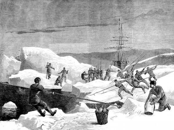Engraving showing the men of the British Arctic Expedition of 1875-1876, cutting a channel through the ice for their ship to follow