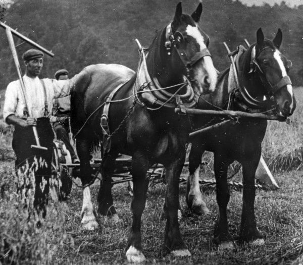 Men and horses ploughing in a field, probably at a farm in the Pontypool area of South Wales