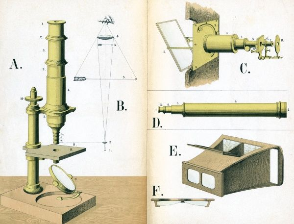 Diagrams of a microscope and its constituent parts. Date: 1882