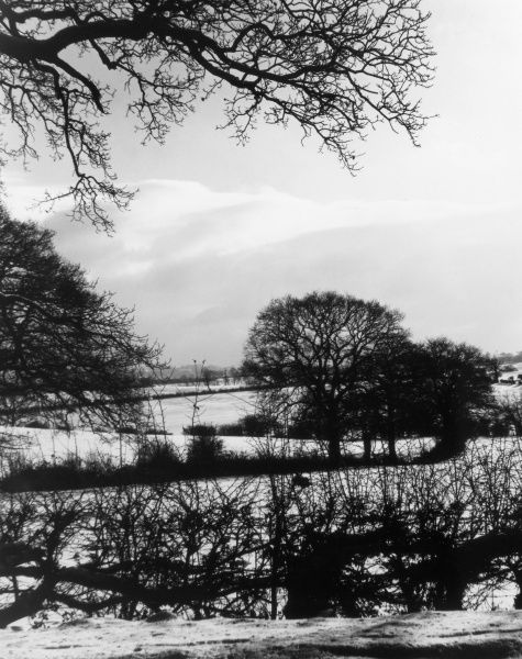 A winter landscape, on London's northern edge, near Enfield, Middlesex, England. Date: 1950s