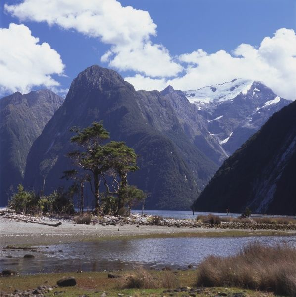 View of Milford Sound with mountains in the background, South Island, New Zealand. Milford Sound is a fjord in the south west of the Island, within Fiordland National Park and the Te Wahipounamu World Heritage site