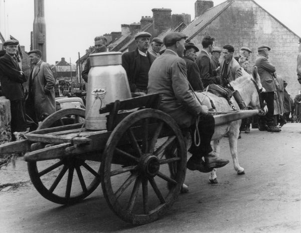 The milkman delivering a milk churn on a horse and cart at Dingle racecourse, County Kerry, Ireland. Date: 1962
