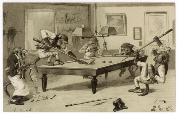 Monkeys play billiards