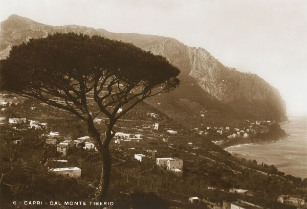Monte Tiberio (Tiberio Mountain) seen in the background of this fine photograph of the Island of Capri, dominated by the magnificent wind-shaped silhouette of a umbrella pine tree, clinging on to the rocky hillside