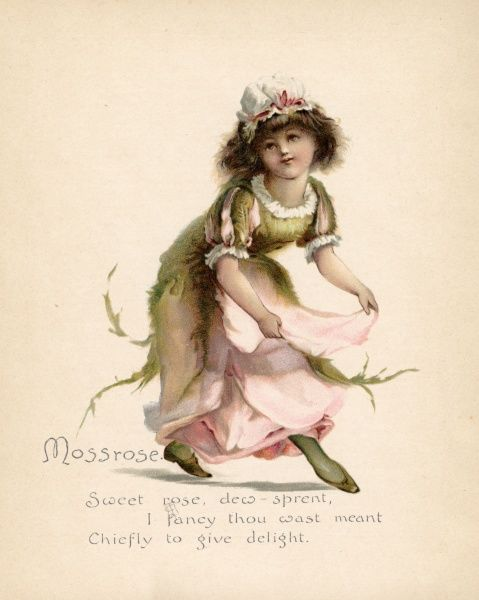 Mossrose personified