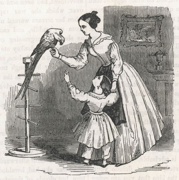 Mother and child with a tame parrot on a perch