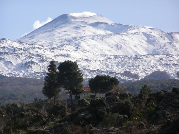 Mount Etna, with trees and a house - right in the lava flow-path, Sicily, Italy