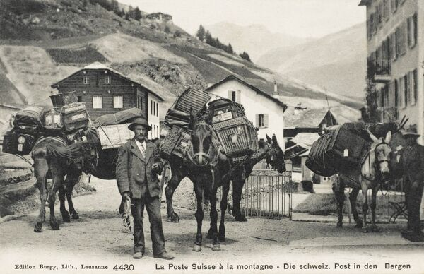 The Mountain Postal Service in Switzerland. The post is transported in a variety of panniers and boxes on the backs/flanks of mules