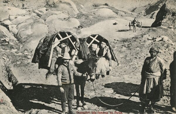 Women and children carried in pannier seating on a mule - Iran Date: 1913