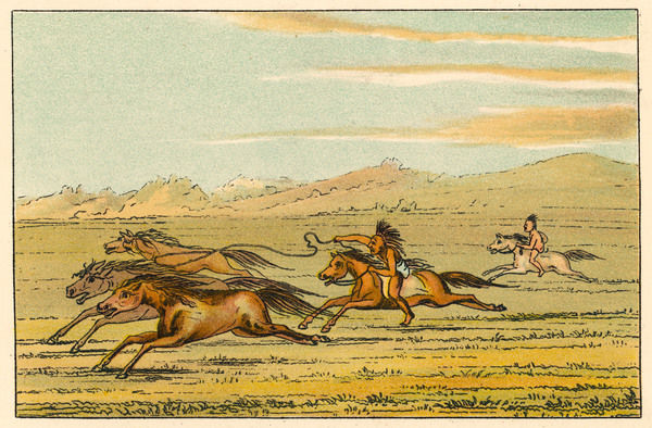 Two Comanche warriors chasing wild horses