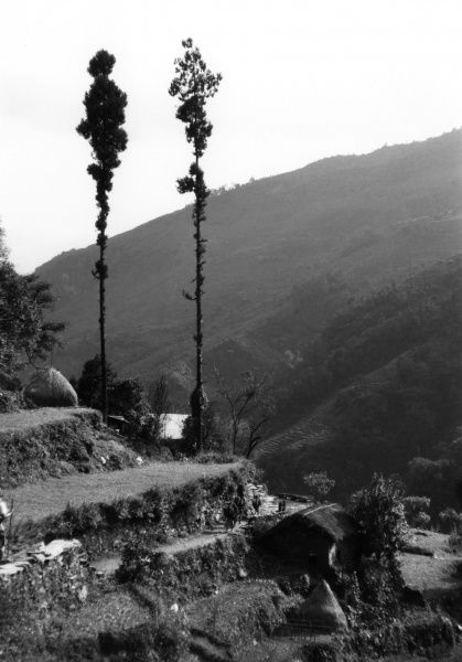 Terrace cultivation in the Khatmandu Valley Date: 1992