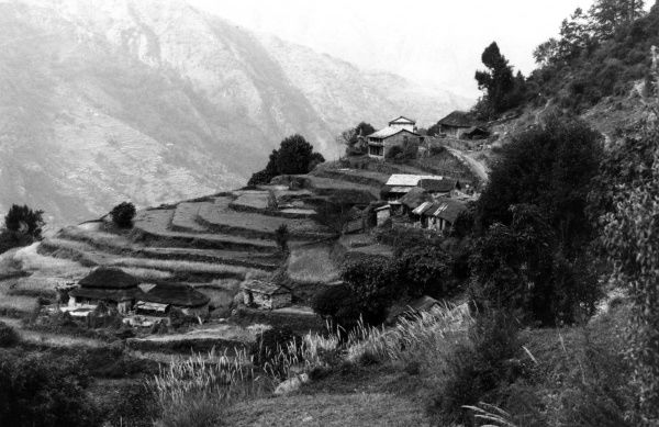Terrace cultivation at Dhampas in the Khatmandu Valley Date: 1992