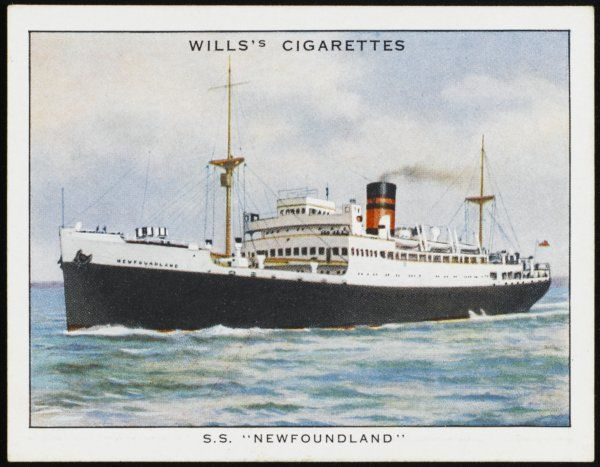 Passenger steamship of the Furness line, preseumably sailing between Britain and Canada