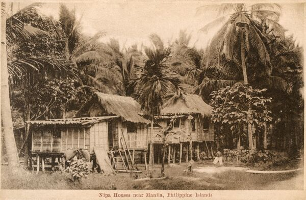 Nipa Stilt Houses (also known as bahay kubo, is an indigenous house used in the Philippines. The native house is constructed out of bamboo tied together, with a thatched roof using nipa/anahaw leaves) near Manila, Philippines. Date: circa 1910s