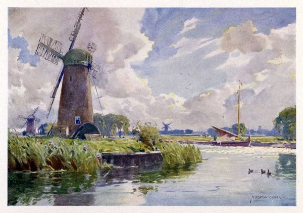Norfolk Broads: on the Thurne